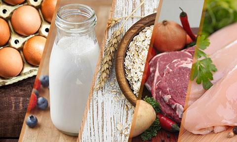 اینفوگرافی: ۵ منبع غذایی عضله ساز