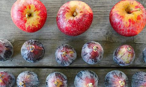 اینفوگرافی: ۵ میوه و خواص آنها در طب امام صادق (ع)